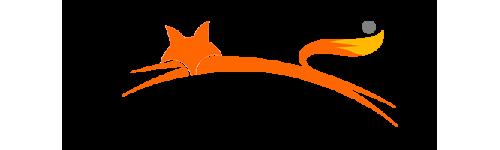FOXRIG.com