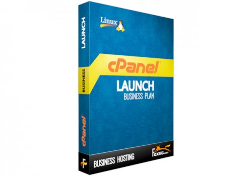 Business Hosting Launch