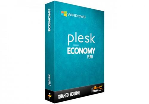 Plesk Economy