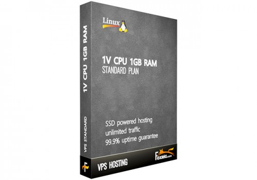 VPS 1vCPU 1GB RAM